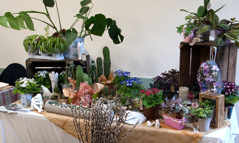 https://northwoottonvillagehall.org.uk/wp-content/uploads/2019/03/NWVH04-Flowers-on-the-Green-Florist-North-Wootton-Village-Market-Village-Hall-Kings-Lynn-Norfolk-Event-Venue-Hire-Farmers-Market.jpg